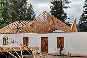 Framed home with Trusses